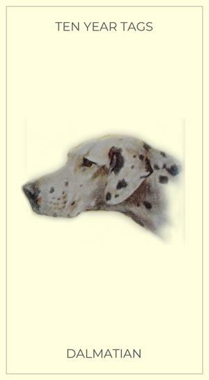 Arthur Wardle Dalmatian